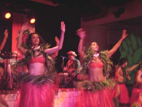 Tahitian Dancer Grass Skt